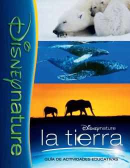 tapa spanish copy