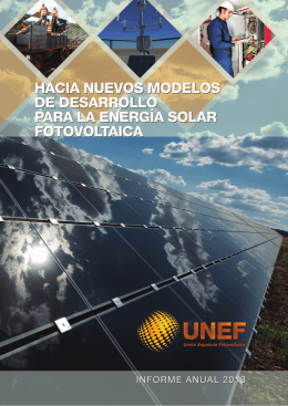 Informe Anual UNEF 2013