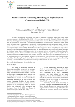 Acute Effects of Hamstring Stretching on Sagittal Spinal Curvatures