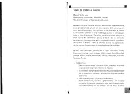 Trazos de protocolo japonés