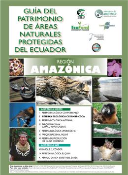 amazónICa - Sistema Nacional de Información