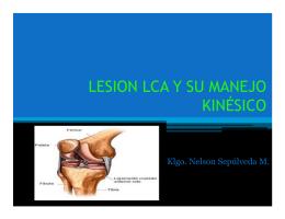 LESION LCA Y SU MANEJO KINÉSICO
