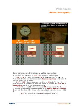 Teoría y problemas resueltos de polinomios.