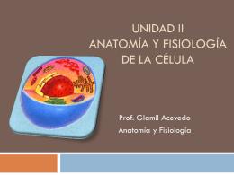 Anatomía y Fisiología de la Célula