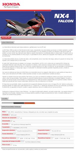 FALCON - Honda Motolitoral