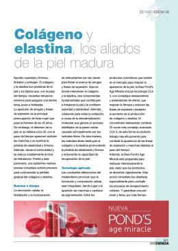 Colágeno y elastina, los aliados de la piel madura