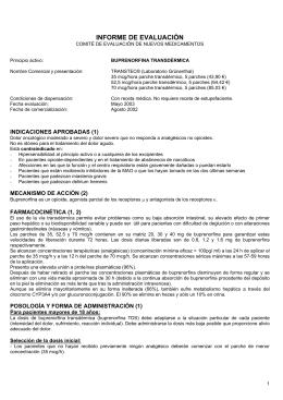 Informe ( pdf , 128 KB)