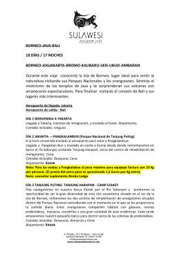 BORNEO-JAVA-BALI 18 DÍAS / 17 NOCHES BORNEO
