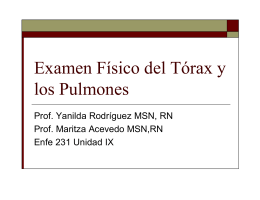 Examen Físico Pulmones