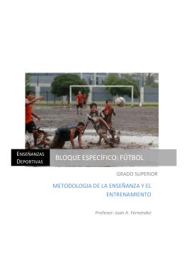 Metodologia Enseñanza y Entrenamiento N3