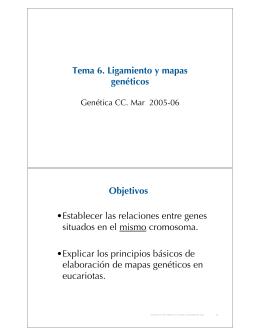 Tema 6. Ligamiento y mapas genéticos Objetivos •Establecer las