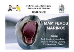 MAMÍFEROS MARINOS - Servicio Bienestar Armada