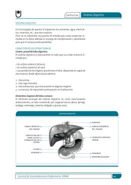 sistema digestivo.indd