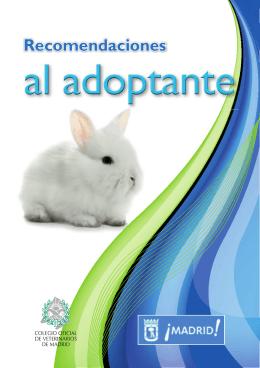 Guía adoptante conejos