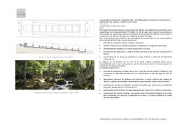 Recuperación espacios fluviales Arties (Naut Aran)
