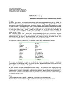 CEBOLLA (Allium cepa L.) - Facultad de Ciencias Agropecuarias