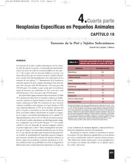 4.Cuarta parte Neoplasias Específicas en Pequeños Animales
