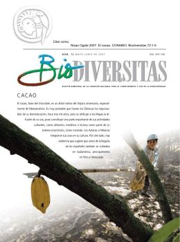 El cacao - Biodiversidad Mexicana