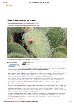 ¿Por qué tienen espinas los cactus? - Real Jardín Botánico