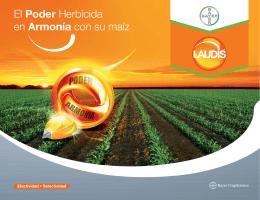 El Poder Herbicida en Armonía con su maíz