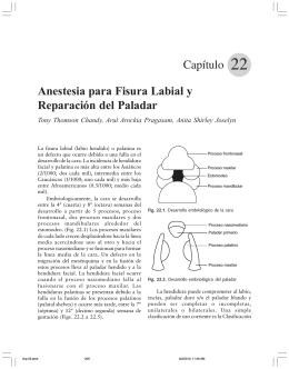 Capítulo Anestesia para Fisura Labial y Reparación del Paladar