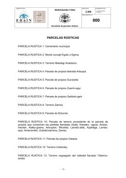 PARCELAS RÚSTICAS - Abaltzisketako udala
