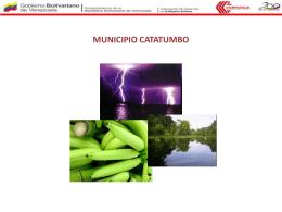 MUNICIPIO CATATUMBO