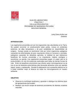 GUIA DE LABORATORIO PRACTICA 7 CELULAS PROCARIOTAS
