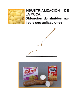 Industrializacion de la yuca, obtencion de almidon