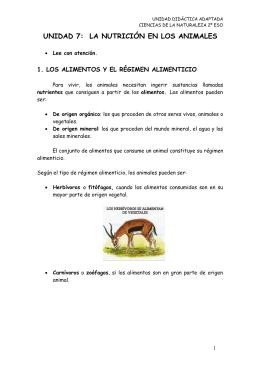 UNIDAD 7 LA NUTRICIÓN EN LOS ANIMALES