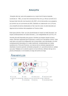 Amaryllis - ESMONTRAVEL