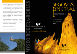 SEGOVIA - Museo Rodera Robles