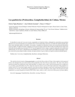Los gonfoterios (Proboscidea, Gomphotheriidae) de Colima, México