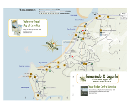 Tamarindo Beach - Toucan Maps Inc.