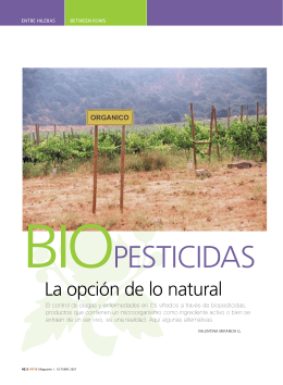 reportaje en PDF - Avance Biotechnologies