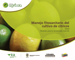 Manejo fitosanitario del cultivo de cítricos