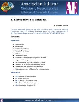El hipotálamo y sus funciones.