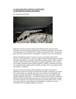 FOTO-IDENTIFICACION DE CARNIVOROS