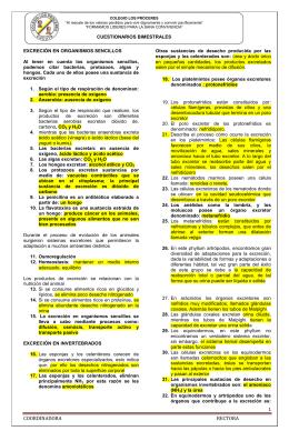 1 COORDINADORA RECTORA