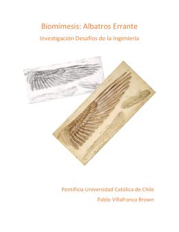 Biomimesis: Albatros Errante - Pontificia Universidad Católica de Chile