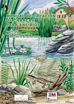 Creación de charcas para anfibios