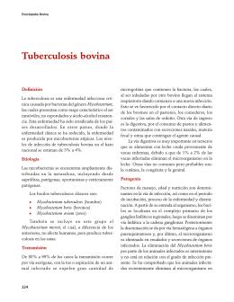 Tuberculosis bovina - FMVZ-UNAM