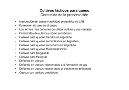 Defectos en quesos