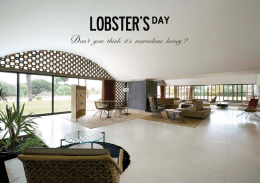 Untitled - Lobster`s Day