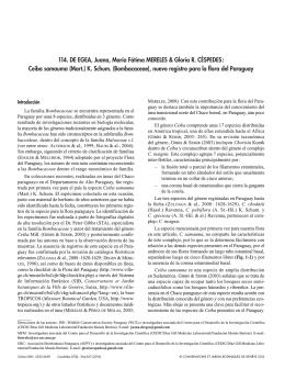 Ceiba Samauma (Mart.) K. Schum. (Bombacaceae), Nuevo