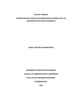 plan de trabajo optimización del proceso de marcación en góndola