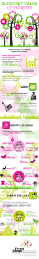 Infographic: Economic value of forests