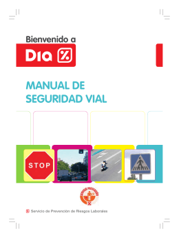 MANUAL DE SEGURIDAD VIAL