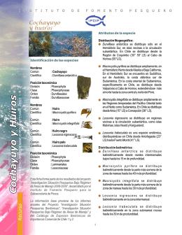 ficha algas - Subsecretaría de Pesca