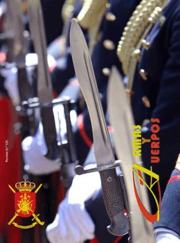 armas y cuerpos - Ejército de tierra